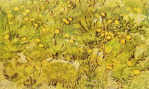 800px-A_Field_of_Yellow_Flowers