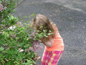 Kezzie smelling lilacs