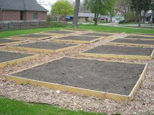 Newly turned plots in Community Garden