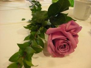 stem of roses