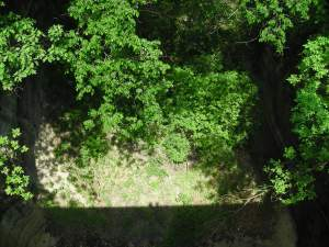 Tom and Penny's shadows:Starved Rock #2