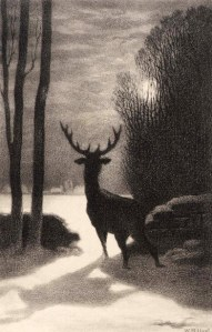 stag-in-the-moonlight