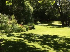 Prairie Garden:sunny span
