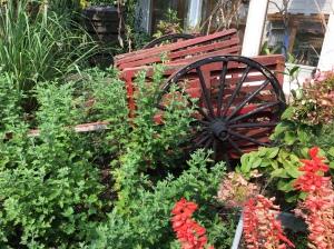 red-cartflowers